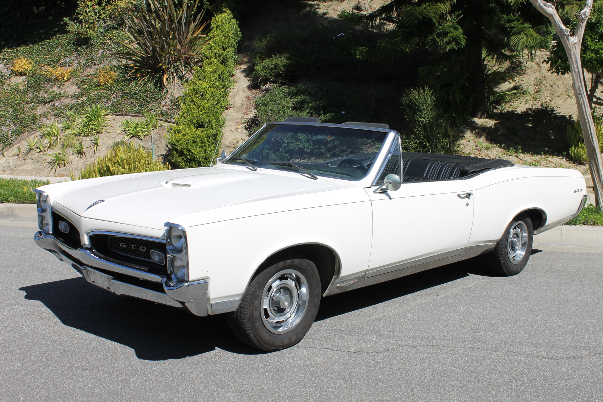 1967 GTO CONVERTIBLE | The Vault Classic Cars